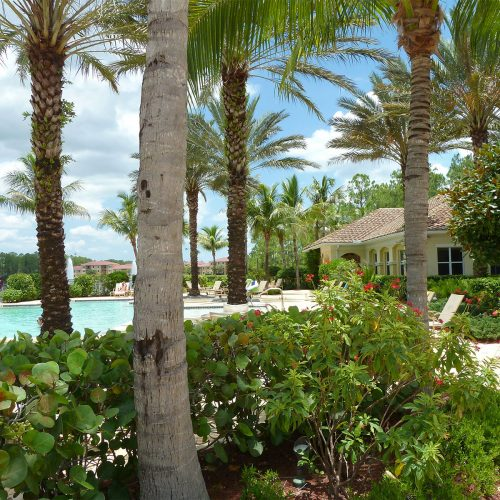 Pool & Spa Landscaping | Tarpon Bay Community Association, Inc. - Naples, Florida